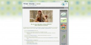 Wiser World Travel